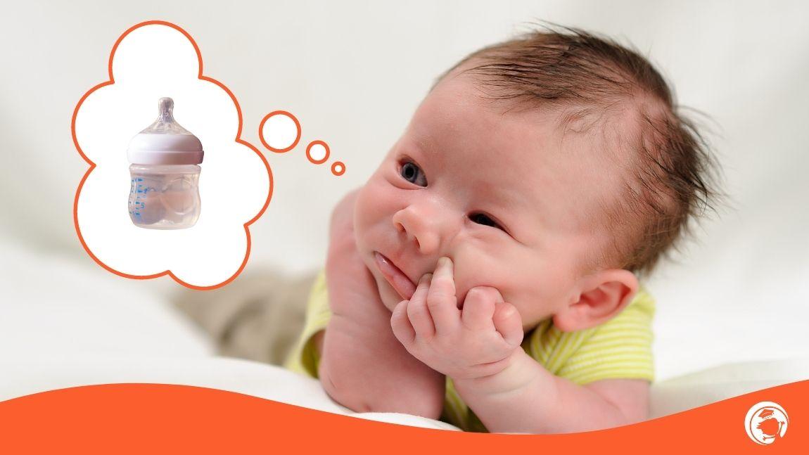 O Meu Bebé sente Sede?